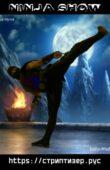 шоу ниндзя с акробатикой и ударами ног